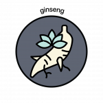 Website Icon_Ginseng Color